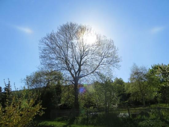 Wetter in Thalheim am 09.05.2015  Es ist wie man sieht sehr sonnig zumindest morgens um 9 Uhr